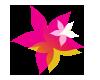 Boronia Gardens Village logo